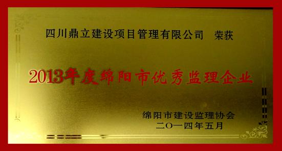 2013年优秀亚搏体育app官方下载地址企业-网.jpg